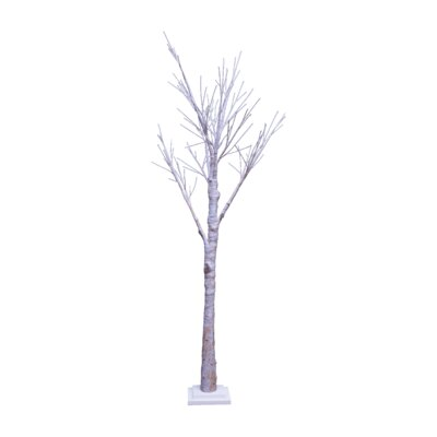 Birch Tree with Base