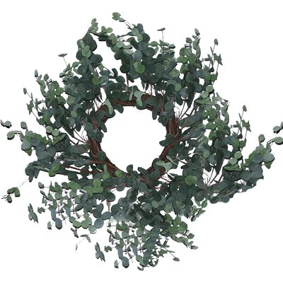 20 Eucalyptus Wreath