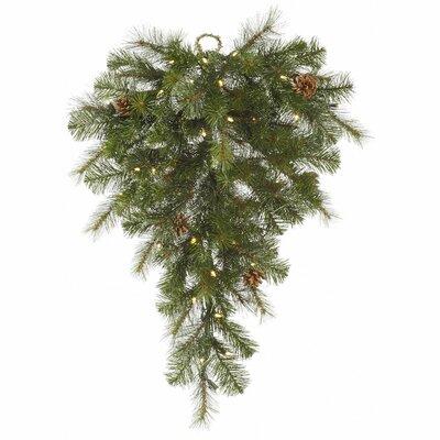 Modesto Mixed Pine