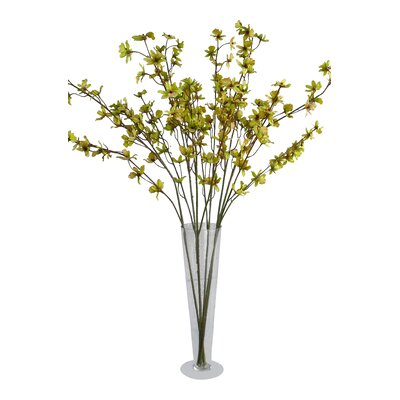 Oncidium Orchid Arrangements Color: Green