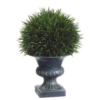 Grass in Plastic Urn