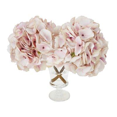 Hydrangea Blossoms in Glass Vase