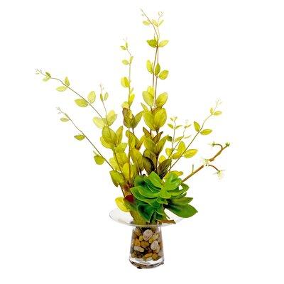 Lonicera Leaf and Echeveria in Vase
