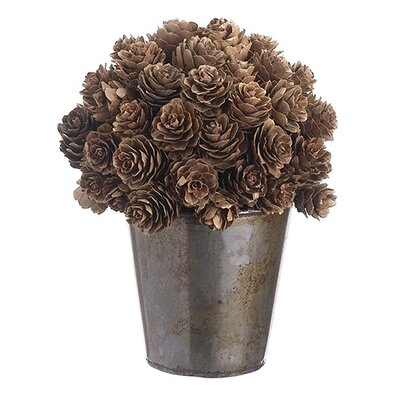 Ball Shaped Pine Cone Topiary in Pot