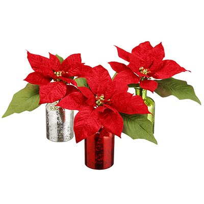 Velvet Poinsettia Plant in Decorative Vase
