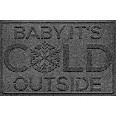 Aqua Shield Baby Its Cold Doormat Color: Charcoal