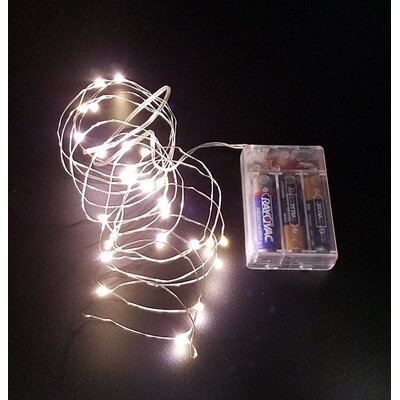 Timer String Lights Color: Warm White 7AD32CC68E5B46FD97A208884F646F6D