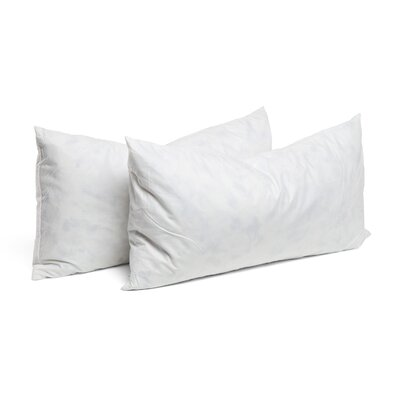 Rectangular Pillow Insert Size: 15