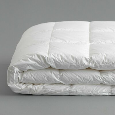 All Season Down Alternative Duvet Insert Bed Size: Queen