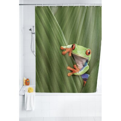 Shower Curtain Frog