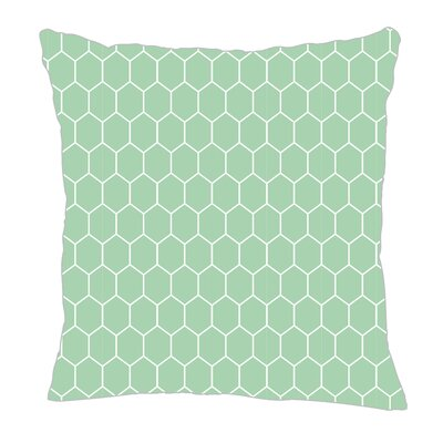 Throw Pillow Size: 20 H x 20 W x 5 D, Color: Mint