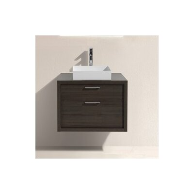Tucci 30 Modern Bathroom Vanity Base Finish: Gray