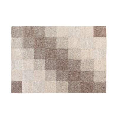 Nizip Handwoven Wool Brown/Beige Area Rug Rug Size: Rectangle 311 x 57
