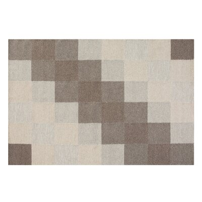 Nizip Handwoven Wool Brown/Beige Area Rug Rug Size: Rectangle 53 x 77