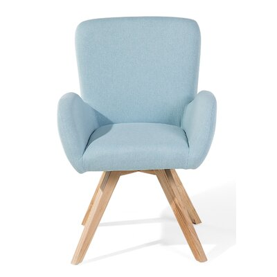 Bjarn Armchair Upholstery: Light Blue, Color: Brown