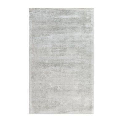 Gesi Handwoven Light Gray Area Rug Rug Size: Rectangle 27 x 411