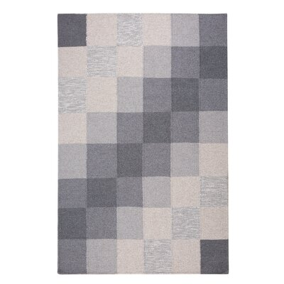 Nizip Hand-Tufted Wool Gray/Beige Area Rug Rug Size: Rectangle 47 x 67