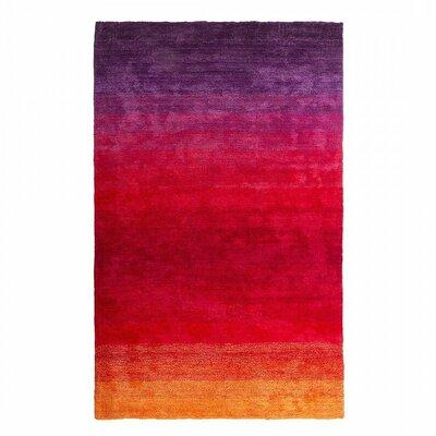 Dinar Violet/Red Area Rug Size: 27 x 411