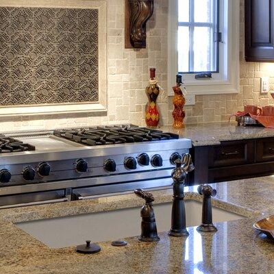 Radius 31 x 18.5 Granite Single Bowl Undermount Kitchen Sink Finish: Cafe Latte