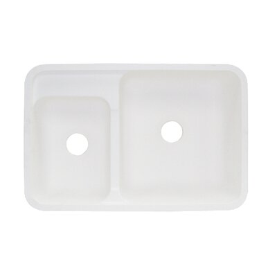 Augusta 21 x 32 Double Bowl Kitchen Sink Finish: Matrix Jade
