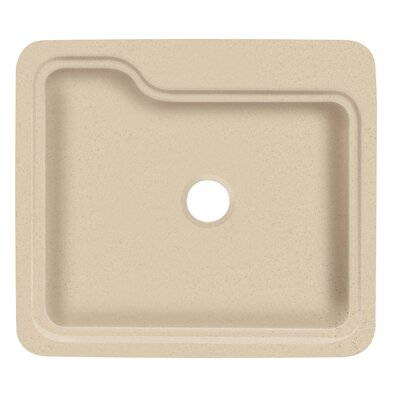 Portland 25 x 22 Single Bowl Kitchen Sink Finish: Matrix Khaki