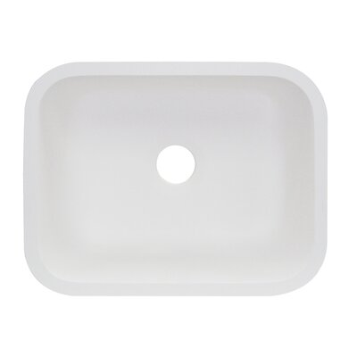 Roma 23 x 18 Single Bowl Kitchen Sink Finish: White