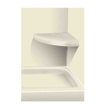 Solid Surface Built-in Shower Bench Finish: Biscuit