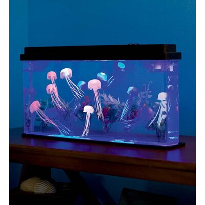 1.8 Gallon Jellyfish Aquarium Kit