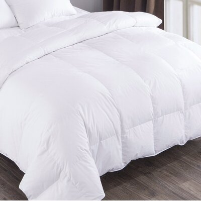 All Seasons Down Comforter Size: Twin