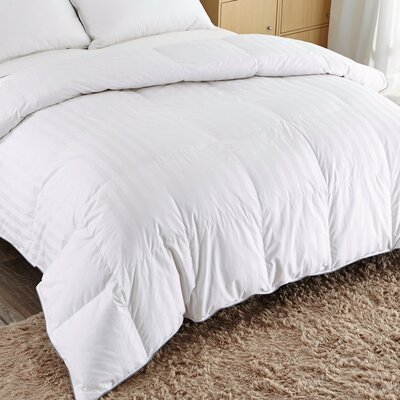 Lightweight Down Comforter Size: Full / Queen
