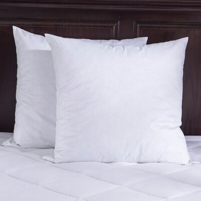 Bed Insert Feathers Pillow Size: 18 x 18