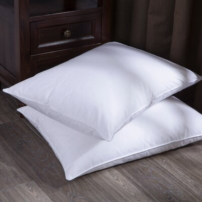 Feathers Pillow Size: Standard/Queen