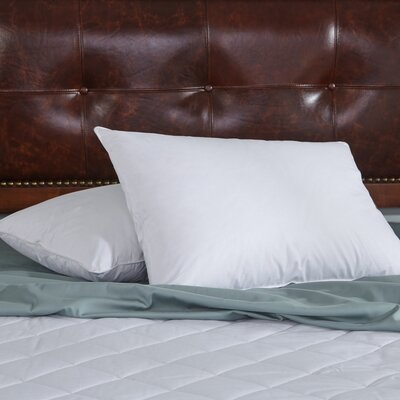 Feather Pillow Size: Standard/Queen