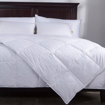 Lightweight Down Comforter Size: King