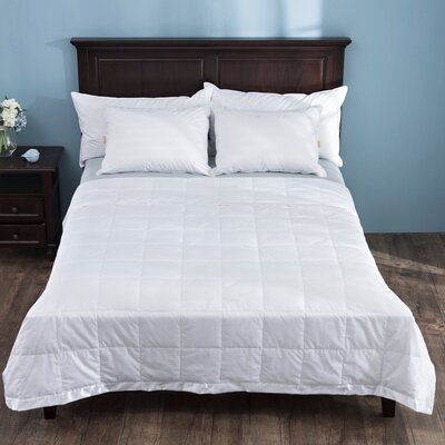 Light Weight Down Cotton Duvet Insert Size: King