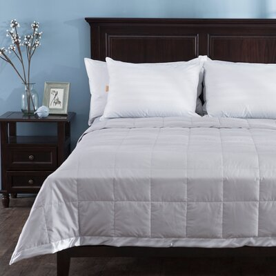 Light Weight Duck Down Duvet Insert Size: Full/Queen