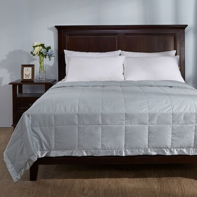 Light Weight Down Duvet Insert with Satin Weave Size: Full/Queen