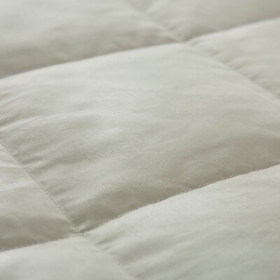 Light Weight Down Duvet Insert Size: Full/Queen