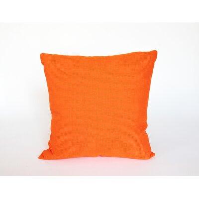 D�cor Alyssa Luvs Indoor/Outdoor Throw Pillow Color: Tangerine Cutie, Size: 20 H x 20 W x 6 D