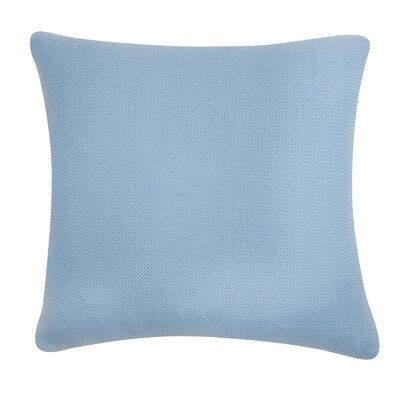 D�cor Alyssa Luvs Indoor/Outdoor Throw Pillow Size: 24 H x 24 W x 6 D, Color: Carolina Blue