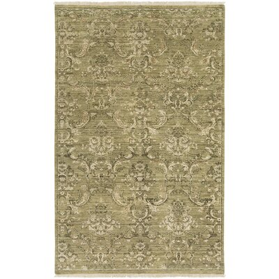 Adelphia Olive/Beige Area Rug Rug Size: Rectangle 56 x 86