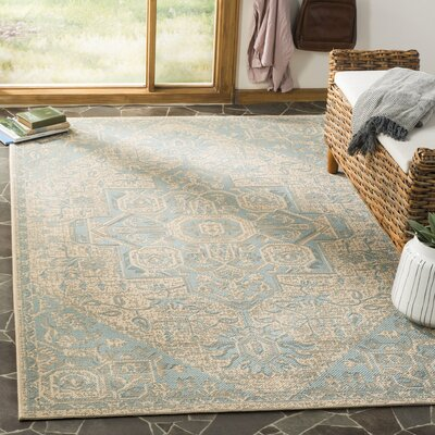 Dunnyvadden Aqua/Cream Area Rug Rug Size: Rectangle 51 x 76