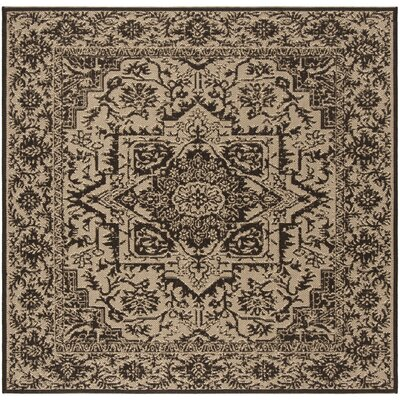 Hoover Brown Area Rug Rug Size: Square 67