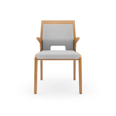 Tobias Arm Chair Finish: Grey