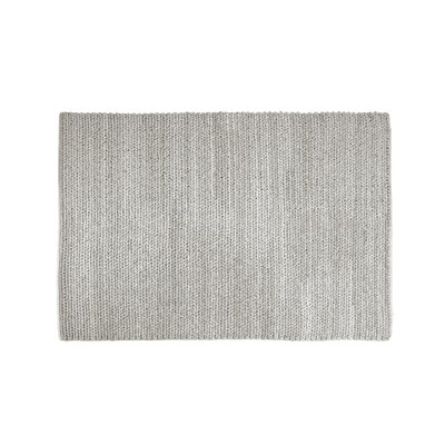 Asta Hand-Woven Gray Area Rug Rug Size: 53 x 76