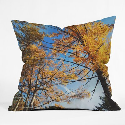 The Autumn Sky Throw Pillow Size: 20 H x 20 W x 6 D