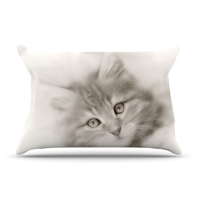 Monika Strigel Main Coon Kitten Cat Pillow Case