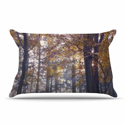 Alison Coxon Autumn Sunbeams Trees Photography Pillow Case