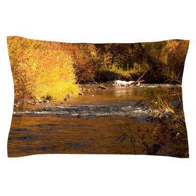 Autumn Stream by Sylvia Coomes Pillow Sham Size: Queen