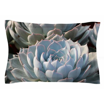 Succulent Love by Suzanne Carter Pillow Sham Size: Queen